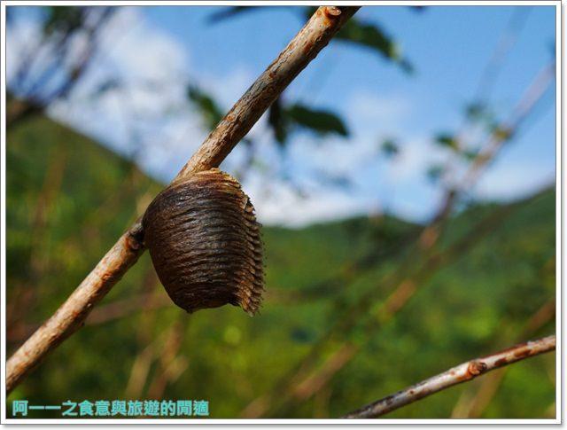 天溪園生態教育中心.陽明山國家公園.親子旅遊.台北好去處image045