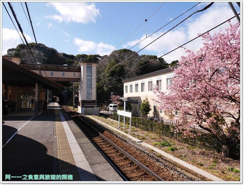 河津櫻.靜岡伊豆.日本自助旅遊.交通.攻略image009