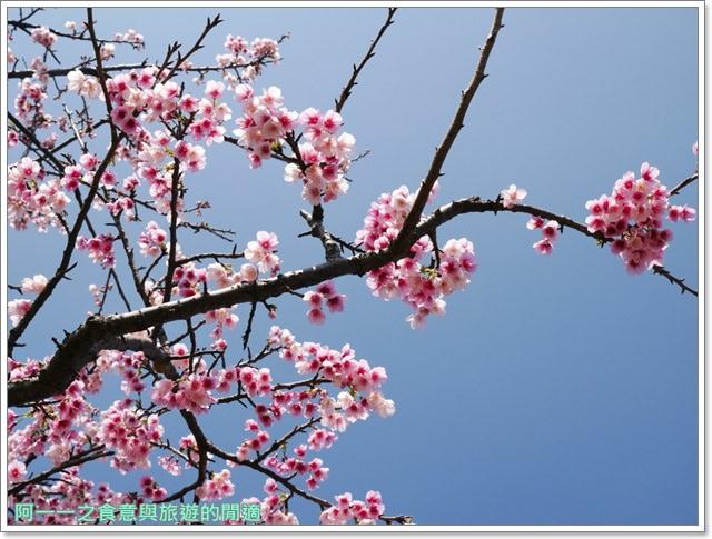 台東美食景點初鹿牧場初鹿鮮乳鮮奶櫻花祭放山雞伴手禮image022