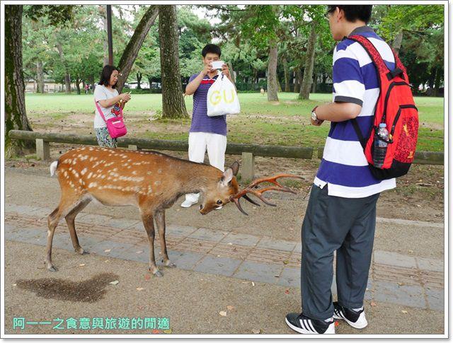 奈良.斑鳩一日卷.鹿.猿澤池.興福寺.五重塔image036