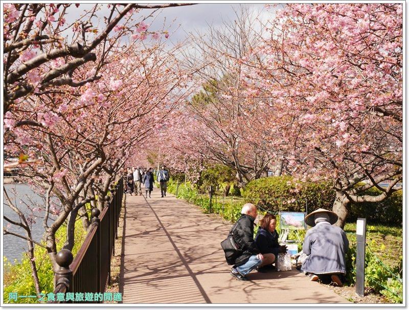 河津櫻.靜岡伊豆.日本自助旅遊.交通.攻略image027