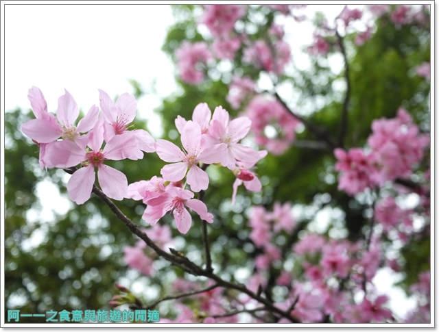 大溪老街武德殿蔣公行館中正公園image029