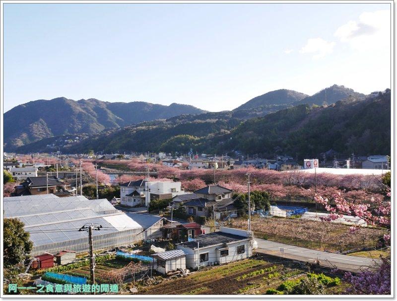 河津櫻.靜岡伊豆.日本自助旅遊.交通.攻略image072