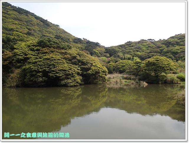 陽明山竹子湖海芋大屯自然公園櫻花杜鵑image029