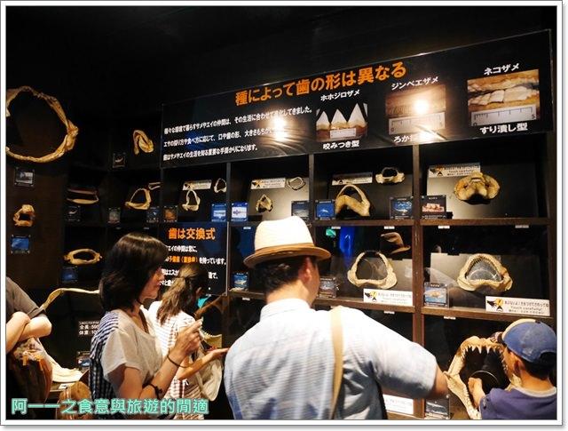 沖繩美麗海水族館.海洋博紀念公園.海豚秀.親子旅遊image047