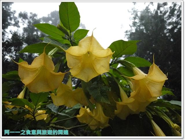 南投溪頭自然教育園區台大image023