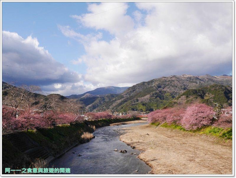 河津櫻.靜岡伊豆.日本自助旅遊.交通.攻略image045