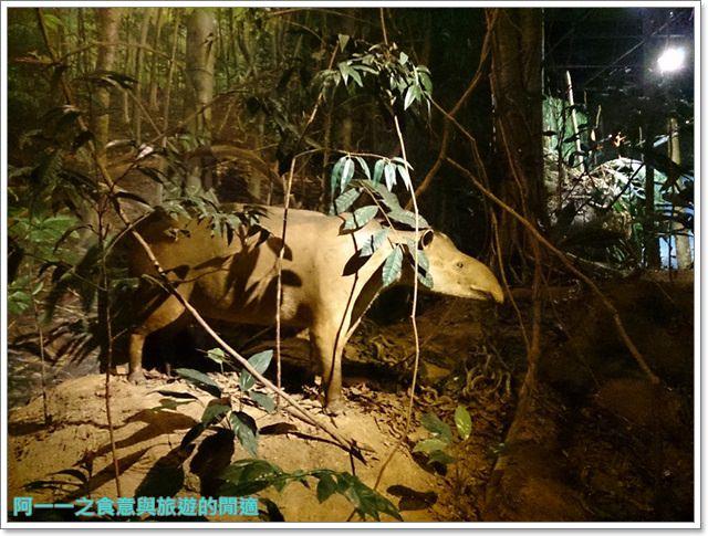 台中親子旅遊景點木乃伊國立自然科學博物館恐龍渾天儀水鐘image024