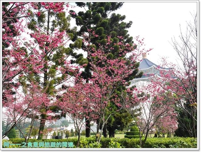 捷運中正紀念堂景點櫻花海綿寶寶暢遊比奇堡特展image081