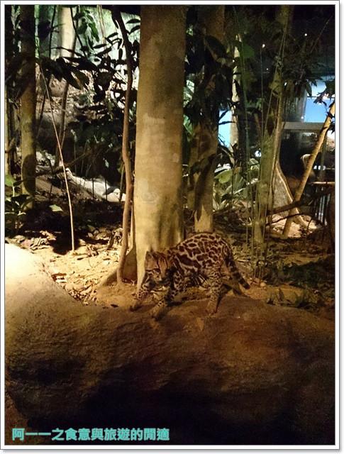 台中親子旅遊景點木乃伊國立自然科學博物館恐龍渾天儀水鐘image025