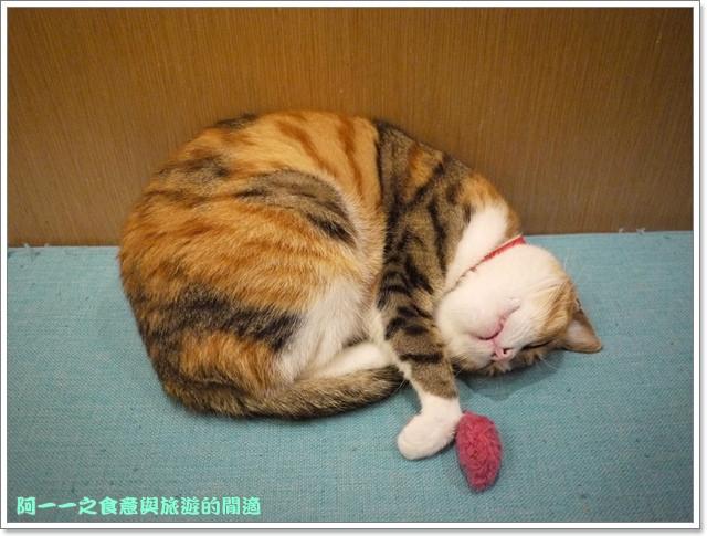 台中貓餐廳立體貓拉花貓旅行咖啡輕食館image043