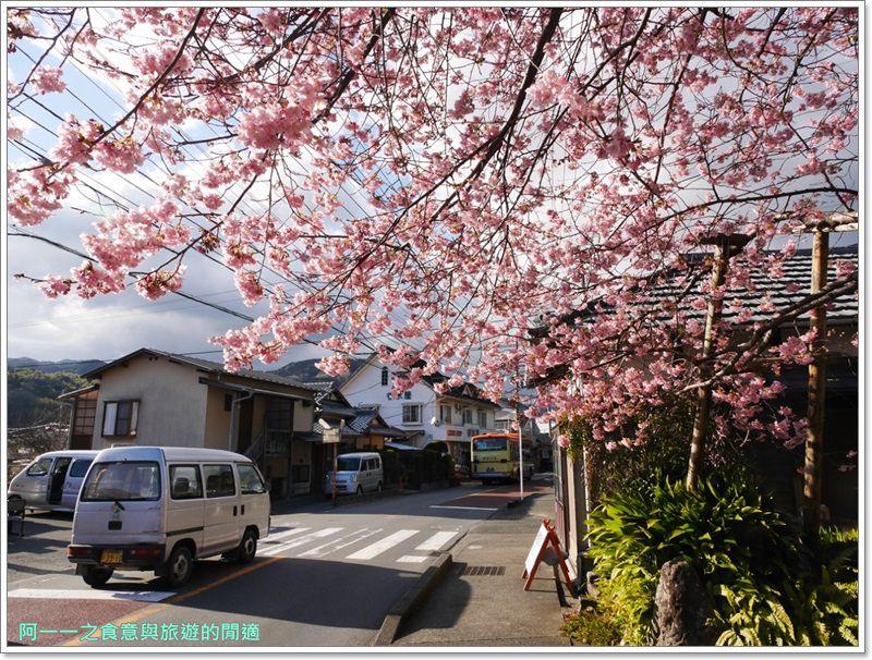 河津櫻.靜岡伊豆.日本自助旅遊.交通.攻略image058