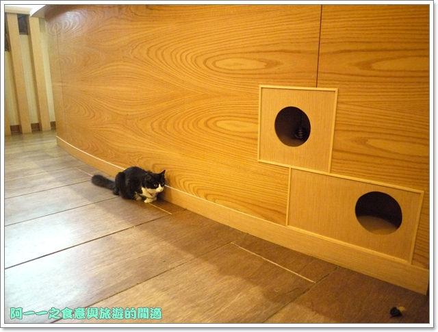 台中貓餐廳立體貓拉花貓旅行咖啡輕食館image055