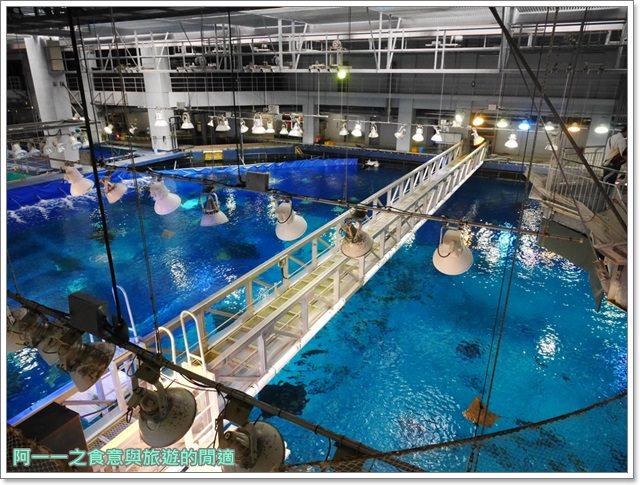 沖繩美麗海水族館.海洋博紀念公園.海豚秀.親子旅遊image053
