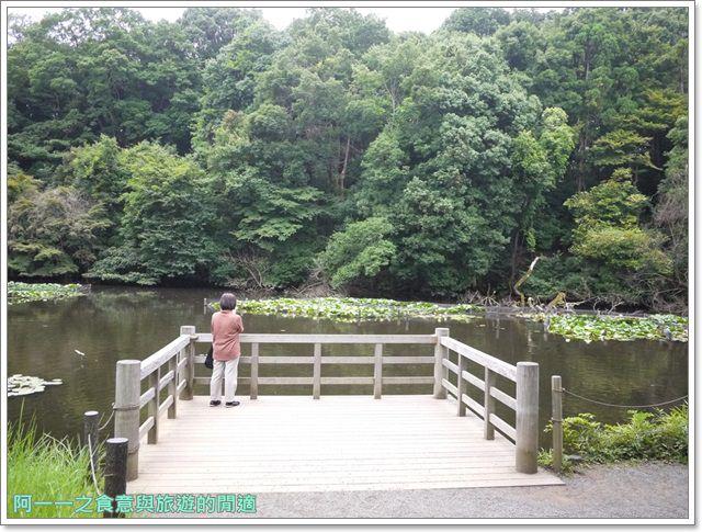 明治神宮原宿澀谷忠犬八公小八御苑日本東京自助旅遊image051