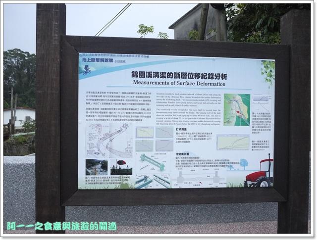 image025池上伯朗大道金城武