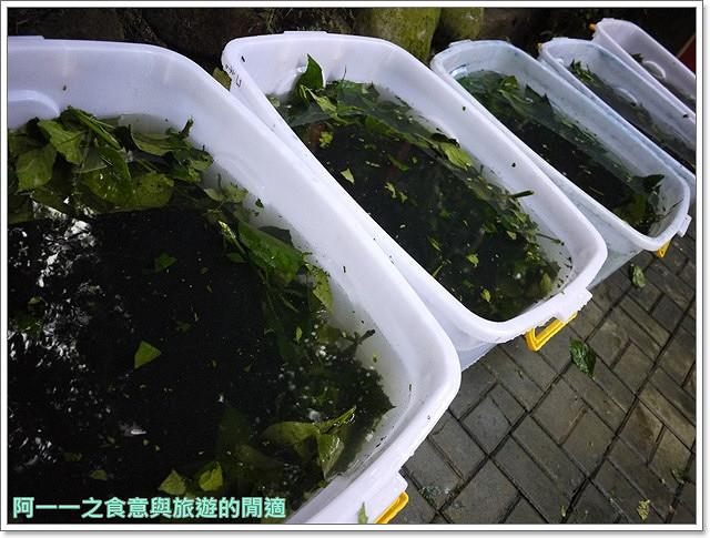 藍染DIY苗栗三義旅遊卓也小屋民宿image011