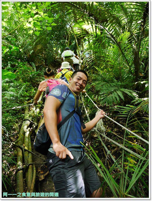 鸞山森林博物館.台東景點.祕境.會走路的樹.阿凡達image035