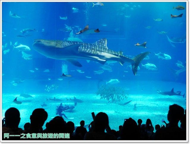沖繩美麗海水族館.海洋博紀念公園.海豚秀.親子旅遊image042