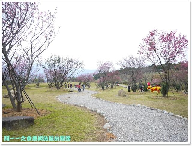 image049初鹿牧場櫻花