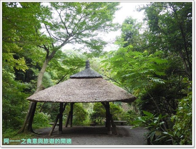 明治神宮原宿澀谷忠犬八公小八御苑日本東京自助旅遊image047