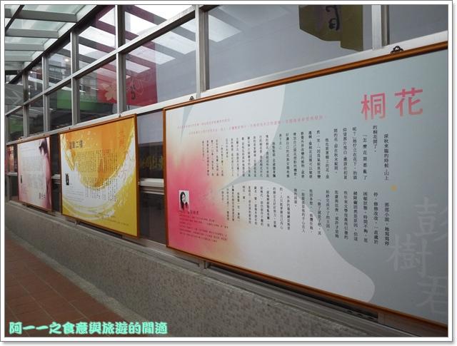 image021桃園客家文化館櫻花