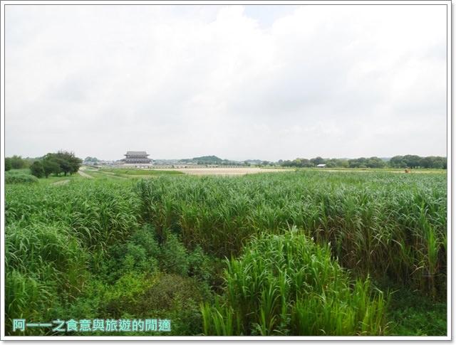 奈良.斑鳩一日卷.鹿.猿澤池.興福寺.五重塔image008