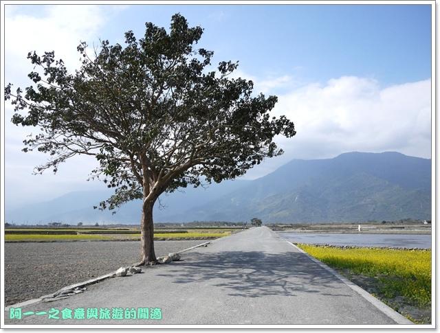 image064池上伯朗大道金城武