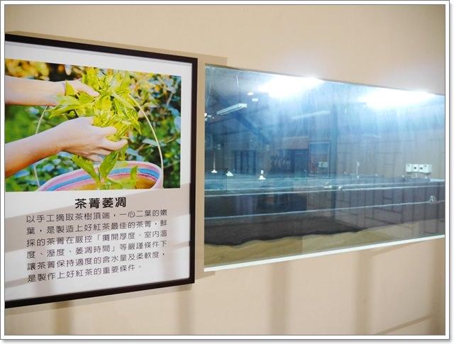 廖鄉長紅茶故事館南投日月潭伴手禮紅玉台茶18號阿薩姆image019