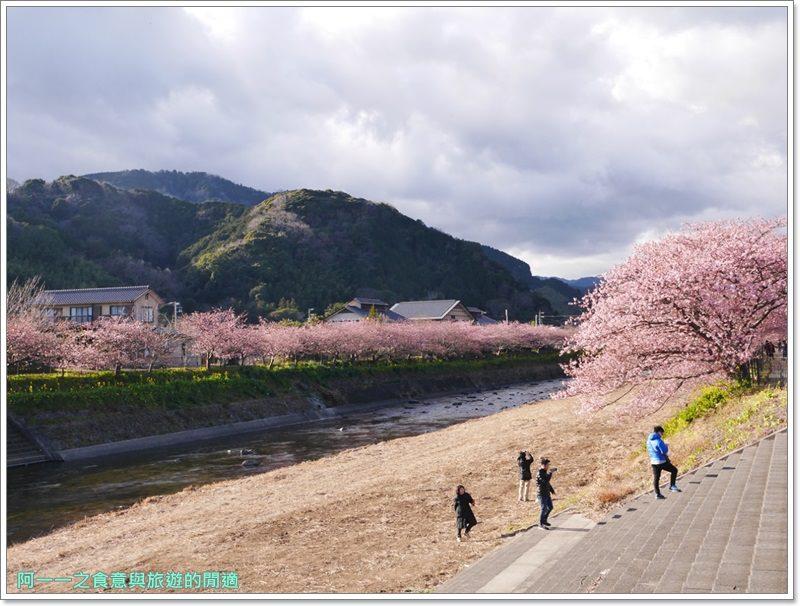 河津櫻.靜岡伊豆.日本自助旅遊.交通.攻略image060