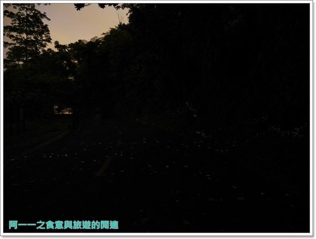 花蓮鯉魚潭螢火蟲賞蝴蝶青陽農場攝影花蓮旅遊image037