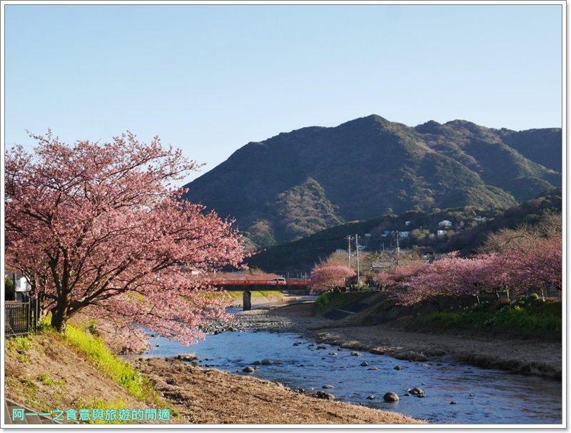 河津櫻.靜岡伊豆.日本自助旅遊.交通.攻略image075