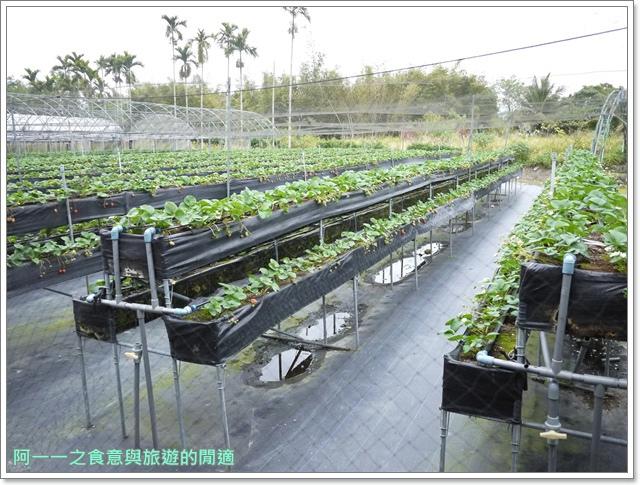 台東關山美食關山臭豆腐親山農園草莓冰淇淋image065