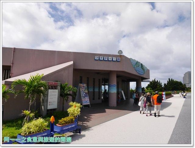 沖繩美麗海水族館.海洋博紀念公園.海豚秀.親子旅遊image062