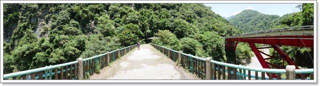 台東旅遊.泰源幽谷.登仙橋.台灣獼猴.東河橋.東部海岸image021