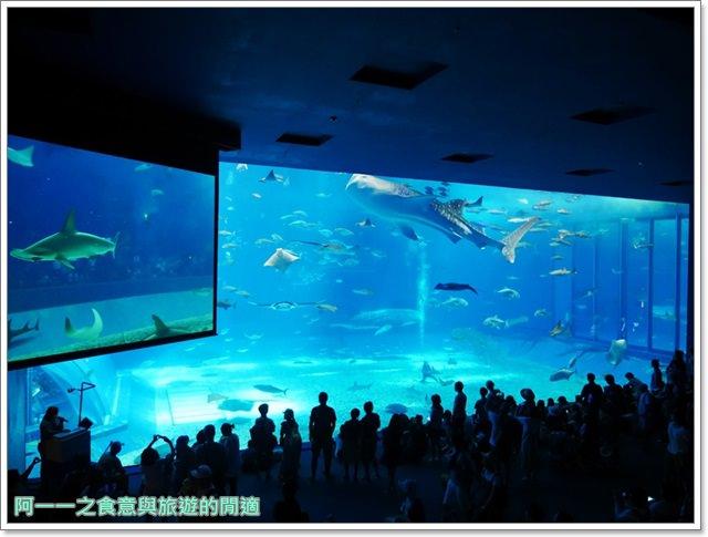 沖繩美麗海水族館.海洋博紀念公園.海豚秀.親子旅遊image041