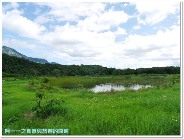 台東.鹿野.二層坪水橋.新良濕地.秘境image034