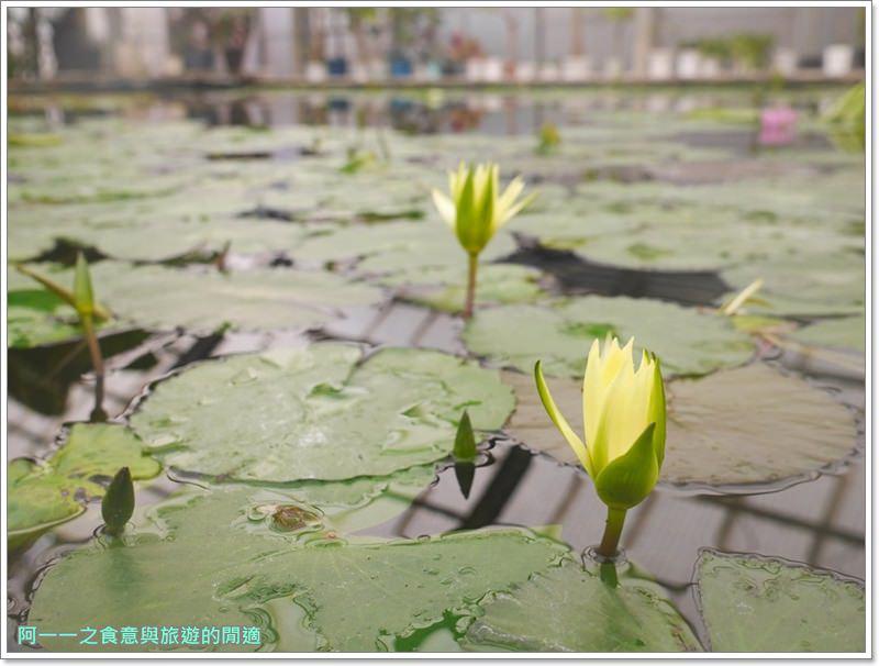 海地獄.九州別府地獄八湯.九州大分旅遊image015