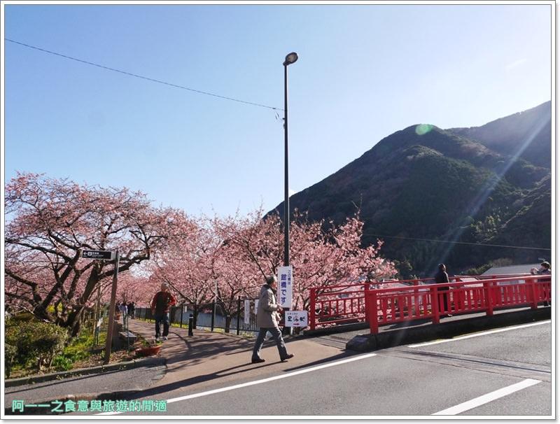 河津櫻.靜岡伊豆.日本自助旅遊.交通.攻略image017