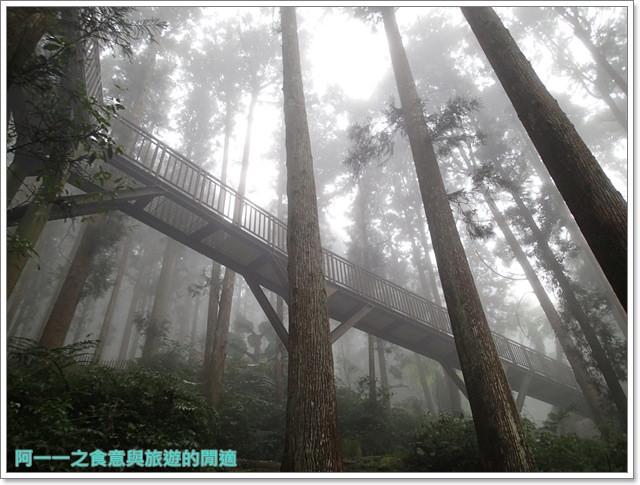 南投溪頭自然教育園區台大image045