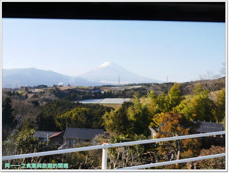 三島SkyWalk.步行吊橋.富士山.靜岡景點image011
