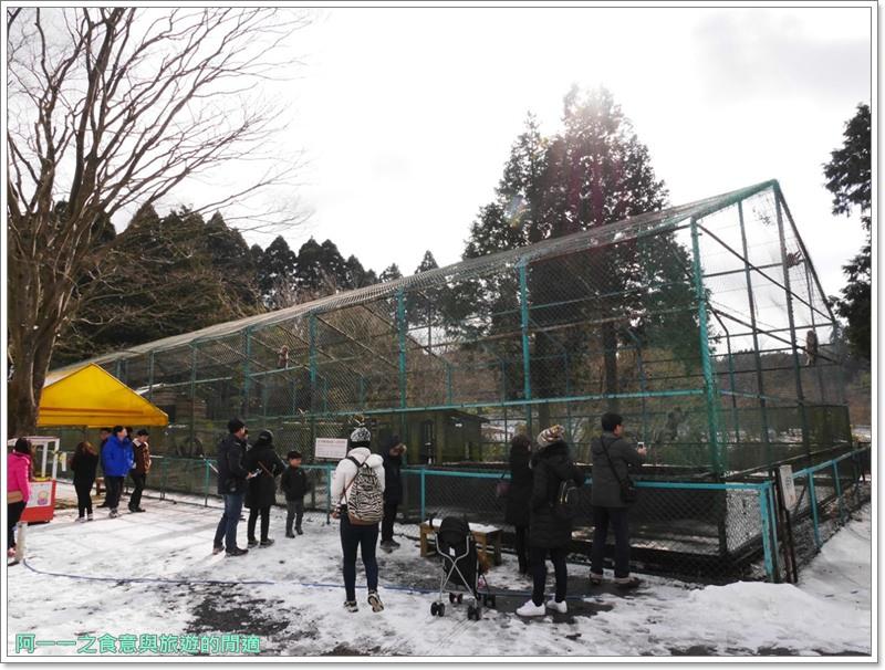 南阿蘇鐵道.阿蘇猿劇場.日本九州旅遊image014