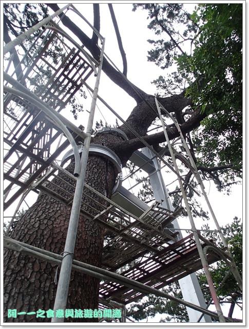 花蓮景點松園別館古蹟日式建築image013