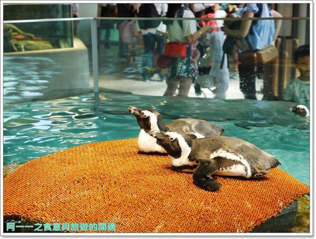 大阪旅遊.expocity.nifrel.海遊館.親子.動物園image051
