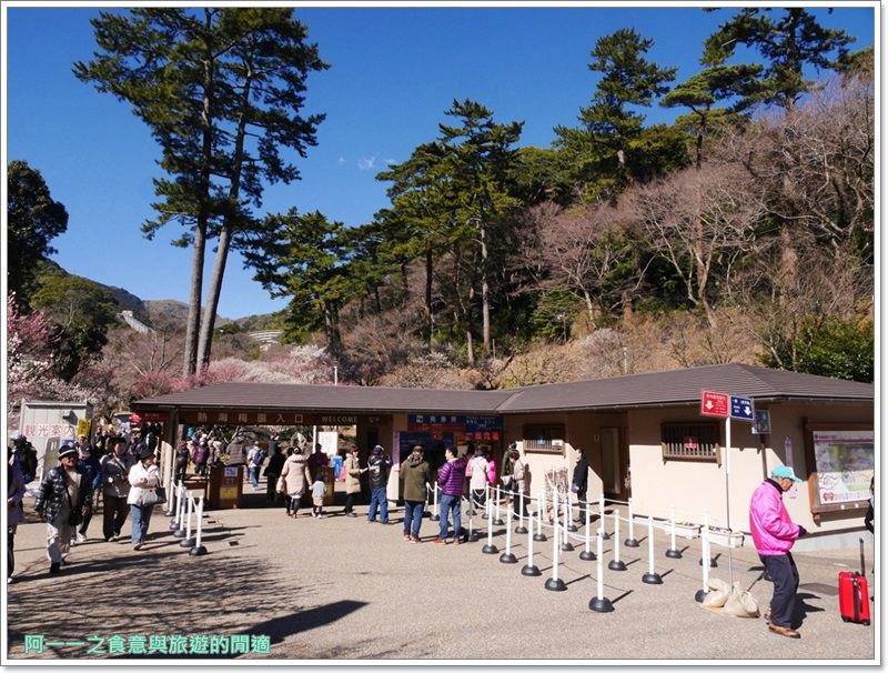 靜岡旅遊.熱海梅園.來宮站.賞花.梅花image016