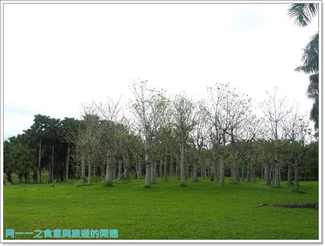 花蓮景點雲山水東華大學image059