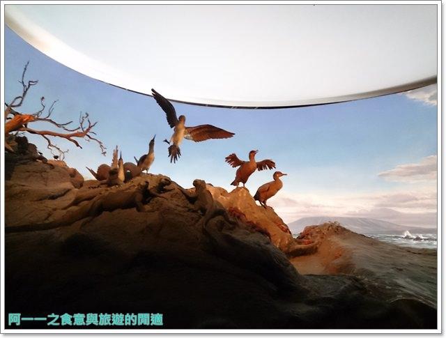 台中親子旅遊景點木乃伊國立自然科學博物館恐龍渾天儀水鐘image023