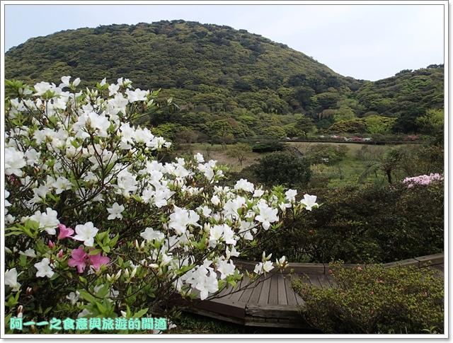 陽明山竹子湖海芋大屯自然公園櫻花杜鵑image017