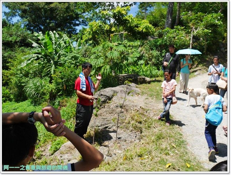 鸞山森林博物館.台東景點.祕境.會走路的樹.阿凡達image056