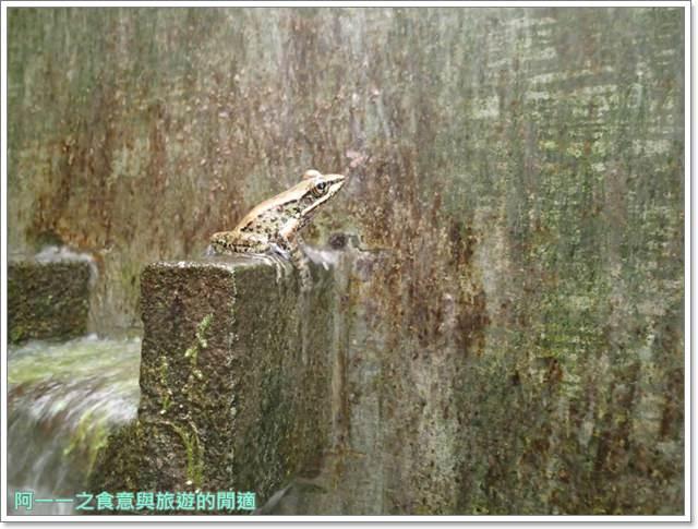 花蓮太魯閣白楊步道水濂洞水簾洞image044
